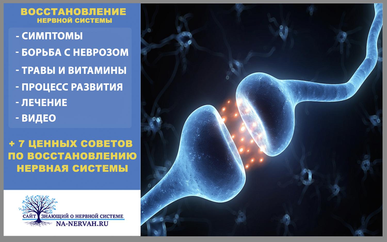 Как поддержать нервную систему